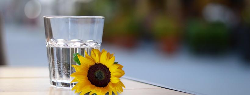 Mach's besser: Meide diesen Fehler beim Wasserkauf! [Teil 1]